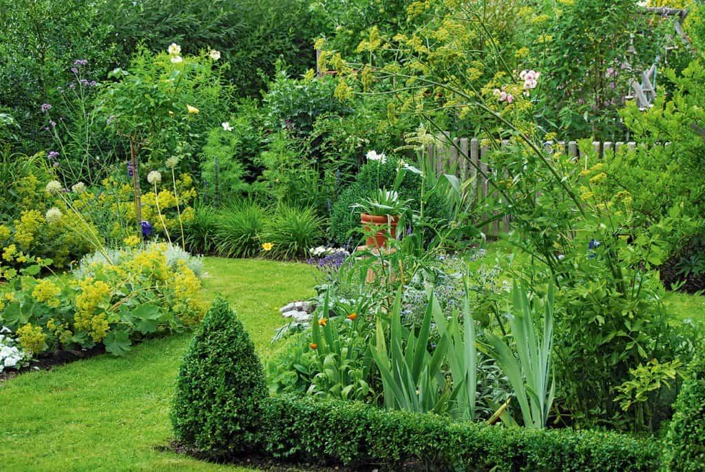 Bepflanzung für einen kleinen Garten
