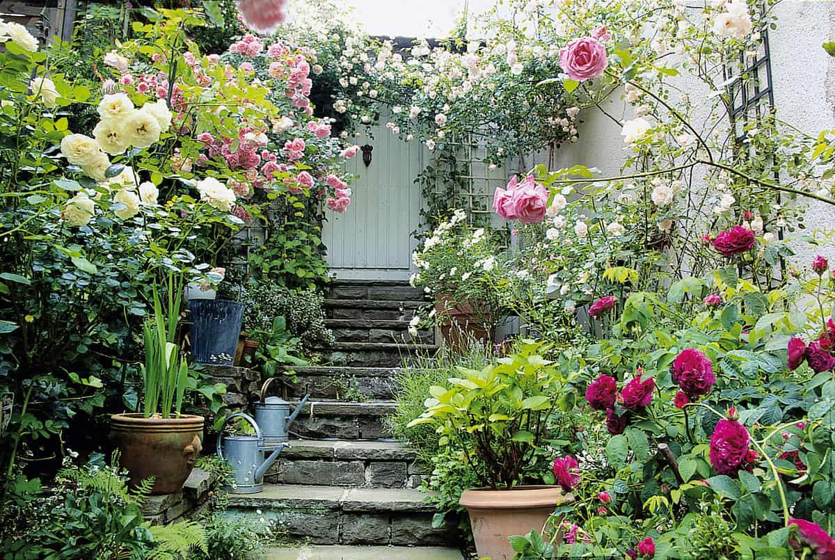 Den Garten optisch vergrößern mit Blumen