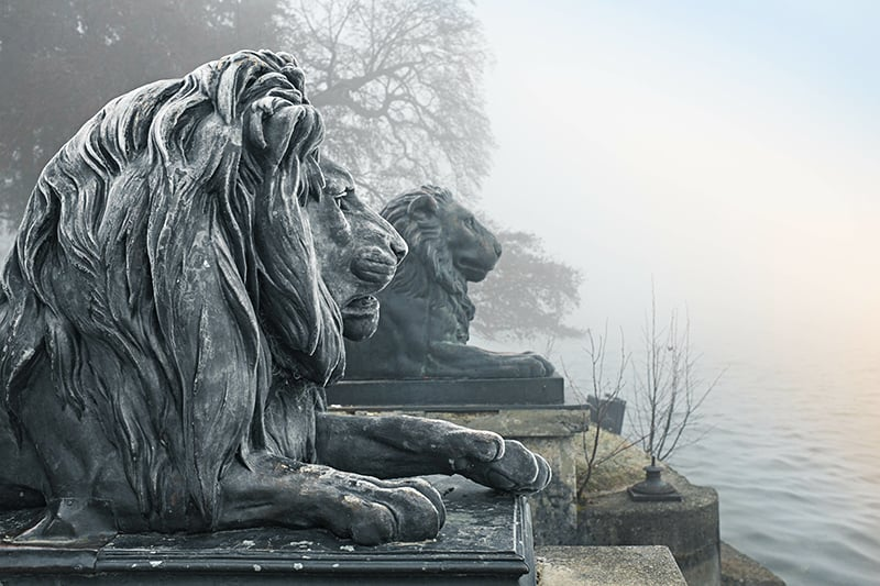 Löwen Starnberger See